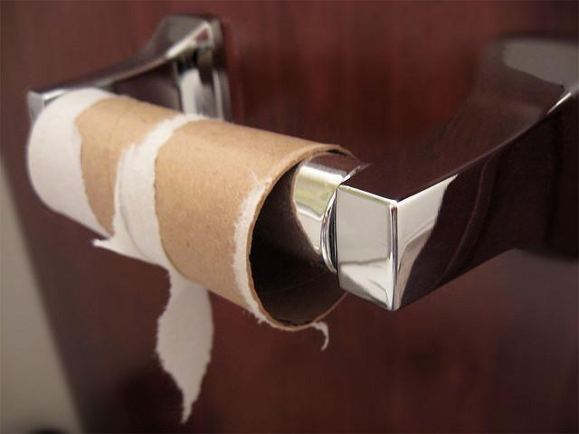 The great toilet paper scare of 1973 for Things to make with toilet paper rolls