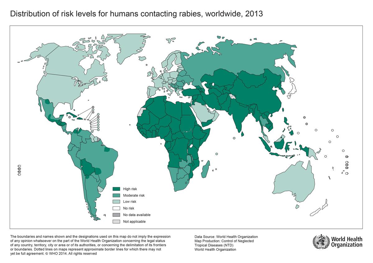 Why Do People Still Die Of Rabies