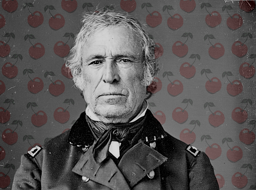 the presidency of zachary taylor President zachary taylor resources including biography, election information, military career, trivia, speeches, and more.